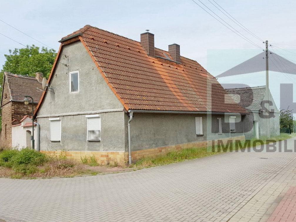 Bauernhaus bei Zörbig